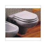Abattant WC en thermodur pour série synthèse suspendu CESAME Blanc de la marque Saniplast image 1 produit