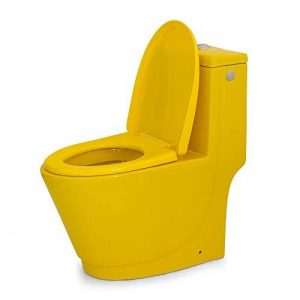 cuvette wc monobloc TOP 1 image 0 produit