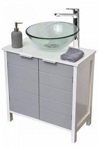 TENDANCE Meuble Dessous de lavabo ou Evier - 2 Portes et 1 étagère - Coloris Blanc et Gris de la marque TENDANCE image 0 produit