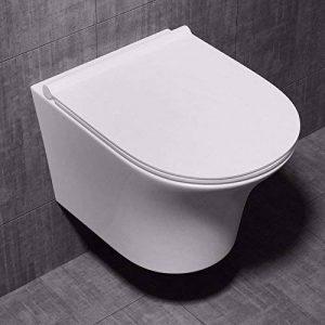 WC toilette suspendu sans bride, à monter au mur, abattant silencieux lunette de WC Aix 309 en céramique, blanc larg x prof x haut 36 x 50 x 47,5cm de la marque sogood image 0 produit
